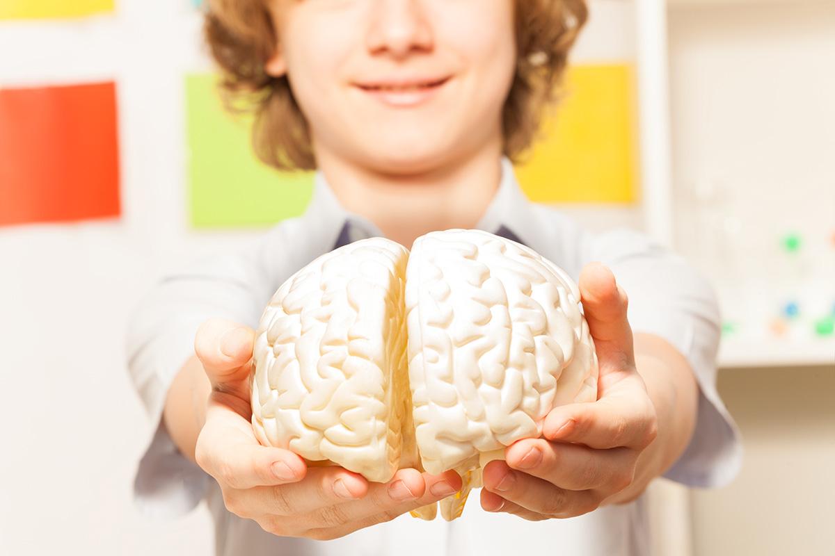 Geriausios smegenų savybės